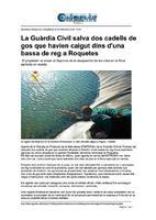 La Guàrdia Civil salva dos cadells de gos que havien caigut dins d'una bassa de reg a Roquetes.