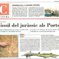 Fòssil del juràssic als Ports