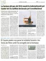 El Copate pretén recuperar la indústria forestal a les Terres de l'Ebre amb l'ús energètic de la biomassa.