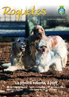 Roquetes: revista mensual d'informació local, número 252, febrer  2008