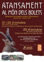 """Atansament al món dels bolets: Setenes Jornades sobre """"Rovellons"""". Roquetes Tardor 2010"""
