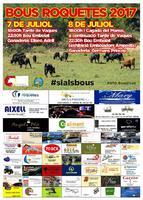 Bous Roquetes 2017