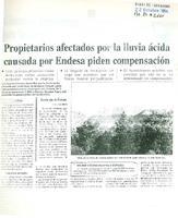 Propietarios afectados por la lluvia ácida causada por Endesa piden compensación