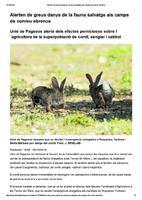 Alerten de greus danys de la fauna salvatge als camps de conreu ebrencs
