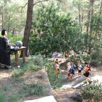 Festa del Sol, Observatori de l'Ebre