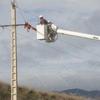 Instal·len proteccions en torres elèctriques per evitar que les aus s'electrocutin.