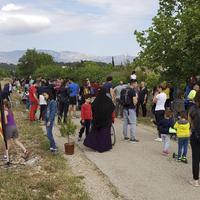Roquetes planta pins pinyoners a la Via Verda per celebrar la Festa de l'Arbre.