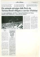 Els animals salvatges dels Ports de Tortosa-Beseit obligats a canviar d'habitat.