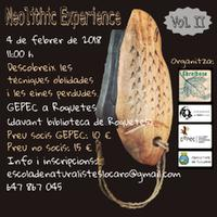 Neolithic experience. Vol. II