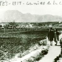 Camí de La Sèquia l'any 1959
