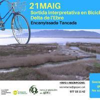 Sortida interpretativa en Bicicleta al Delta de l&amp;#039;Ebre&lt;br /&gt;<br /> Encanyissada - Tancada