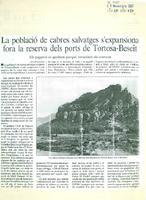 La població de cabres salvatges s'expansiona fora la reserva dels ports de Tortosa-Beseit.