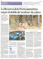 La Reserva dels Ports autoritza caçar el doble de 'trofeus' de cabra