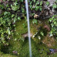 Font de la Cova Avellanes
