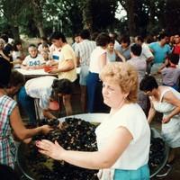 Musclada Popular