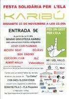 23_11_2013_festa solidària ELA.jpg