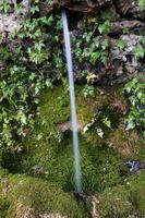 MAIG 2010 Font de Cova Avellanes.jpg