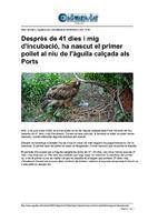 04_06_2020_Aguaita.pdf