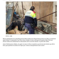 10_12_2020_DT.pdf