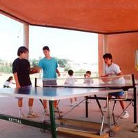 taula tennis.jpg